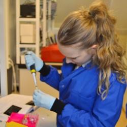 Preparing samples for PCR