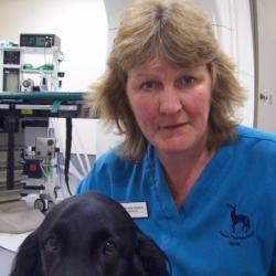 Dr Jane  Dobson