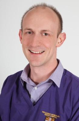 Grant awarded to Dr Tim Williams to identify biomarkers of bladder cancer in dogs
